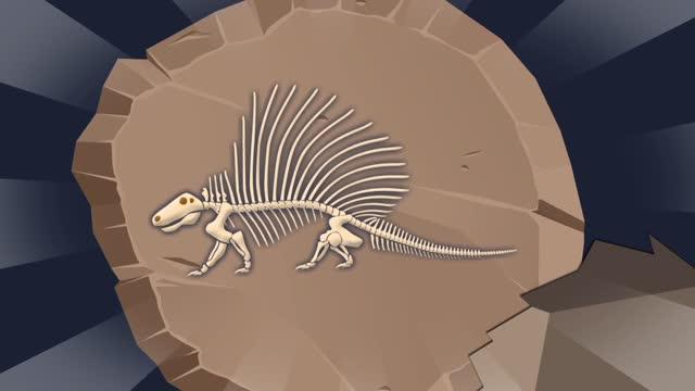 5화 공룡시대 1