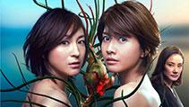 나오미와 카나코